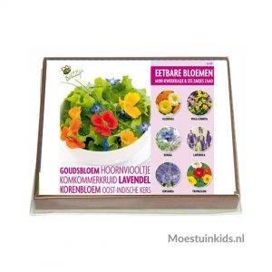 Kweekset Eetbare bloemen - Buzzy