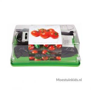Kweekset tomaat - Buzzy Kids