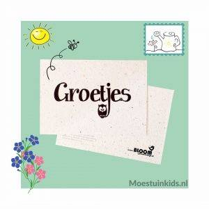 Bloeikaart 'Groetjes' - Bloom your message