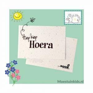 Bloeikaart 'Hiep hiep hoera' - Bloom your message