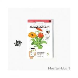 Goudsbloem zaden - Makkelijke Moestuin
