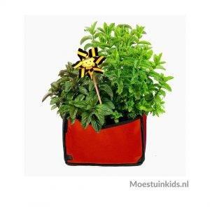 Planty growbag Rood - Makkelijke Moestuin