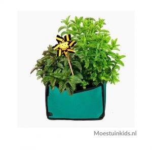 Planty growbag Turquoise - Makkelijke Moestuin