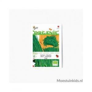 Bieslook zaden - Buzzy Organic