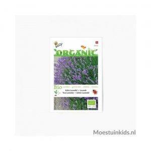 Lavendel zaden - Buzzy