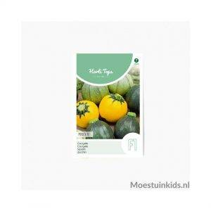 Ronde courgette - Horti Tops