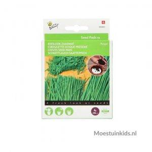 Seedpads ⌀8 cm. Bieslook - Buzzy